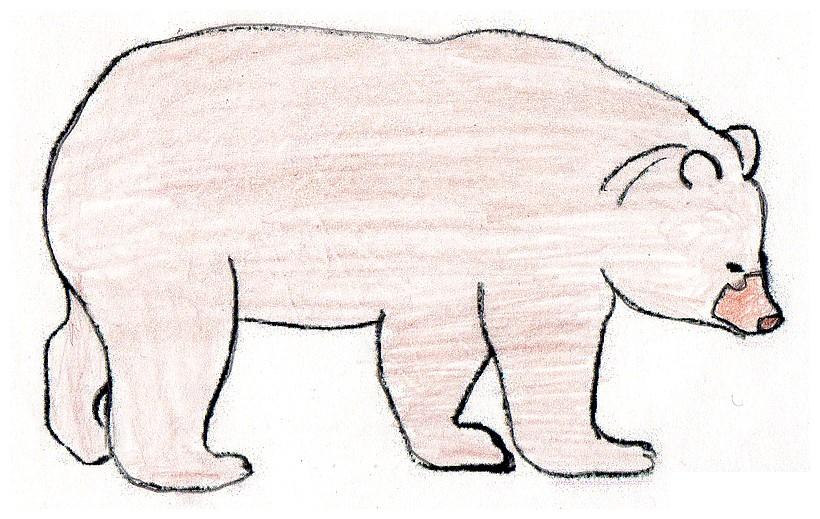 Mais que fait saez la magie des rencontres - Dessin ours facile ...